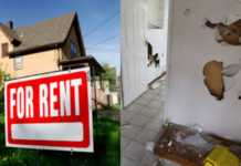 Tenants from hell